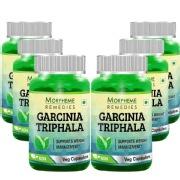 Morpheme Remedies Garcinia-Triphala,  6 Piece(s)/Pack  Unflavoured
