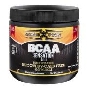 Muscle Powr BCAA Sensation 2:1:1,  0.66 lb  Unflavoured